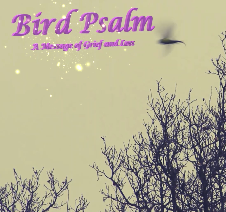 Inspired by 'my friend Tracey': Bird Psalm at the Gerald Moore Gallery 15th June 2019 (Free Entry)